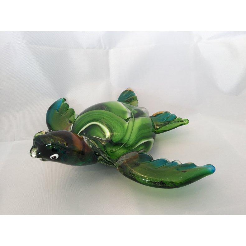 Glas skildpadde